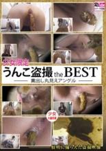 【エロ動画】少女限定 うんこ盗撮 the BEST 糞出し丸見えアングルの画像