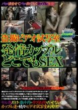 【エロ動画】盗撮ビデオ試写室 発情カップルどこでもSEXの画像
