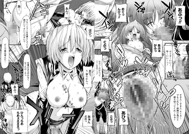 【エロマンガ】淫陵域【アニメ】のエロ画像 No.1