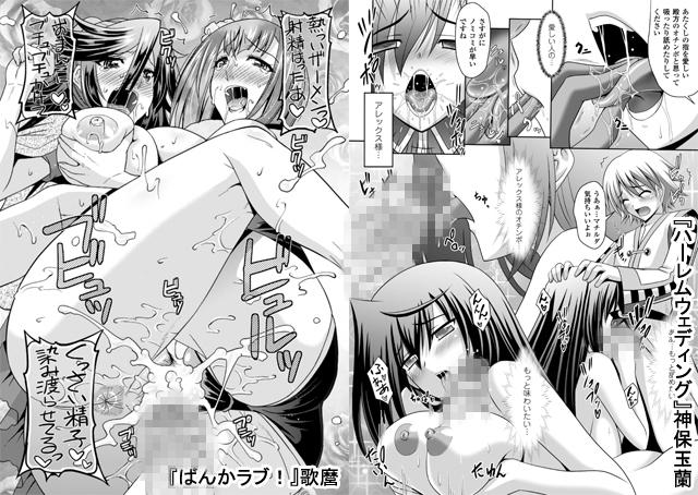 【エロマンガ】メガミクライシスVol.11【アニメ】のエロ画像 No.2