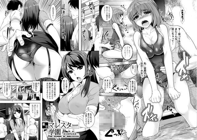 【エロマンガ】催淫マレスター 〜痴漢の園〜【アニメ】のエロ画像 No.2