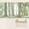 Rewrite Arrangement Album 'Branch'