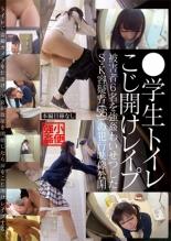 【エロ動画】●学生トイレこじ開けレイプの画像