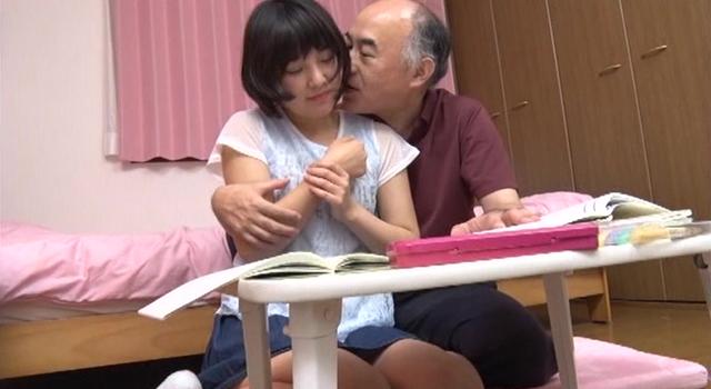 エロ動画、再婚相手の連れ子DXの表紙画像