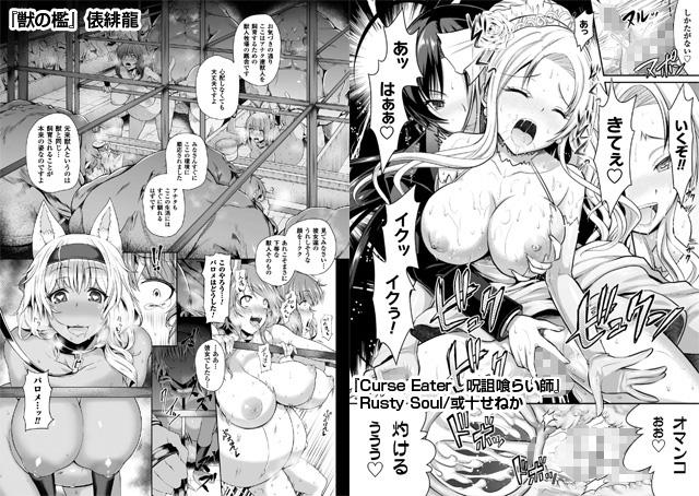 正義のヒロイン姦獄ファイルVol.9【新作】