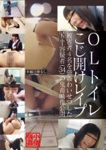 【エロ動画】OLトイレこじ開けレイプの画像
