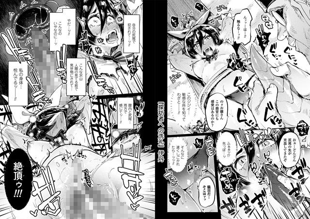 二次元コミックマガジン 磔にされたヒロインを極太男根で絶頂杭打ち!Vol.2【新作】【スマホ対応】