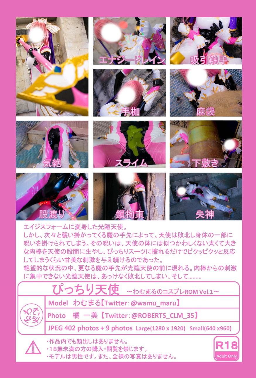 ぴっちり天使〜わむまるのコスプレROM Vol.1〜