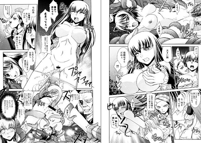 【エロマンガ】淫姫無双 Vol.1【アニメ】のエロ画像 No.2