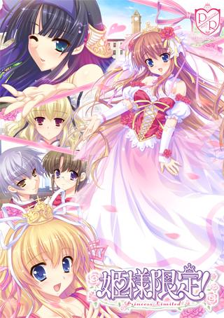 姫様限定! 〜 Princess Limited 〜のタイトル画像